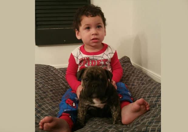 pug-with-child